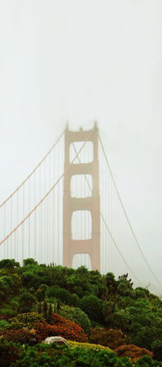 MyRainbowPages.com - Northern California's Directory of ...
